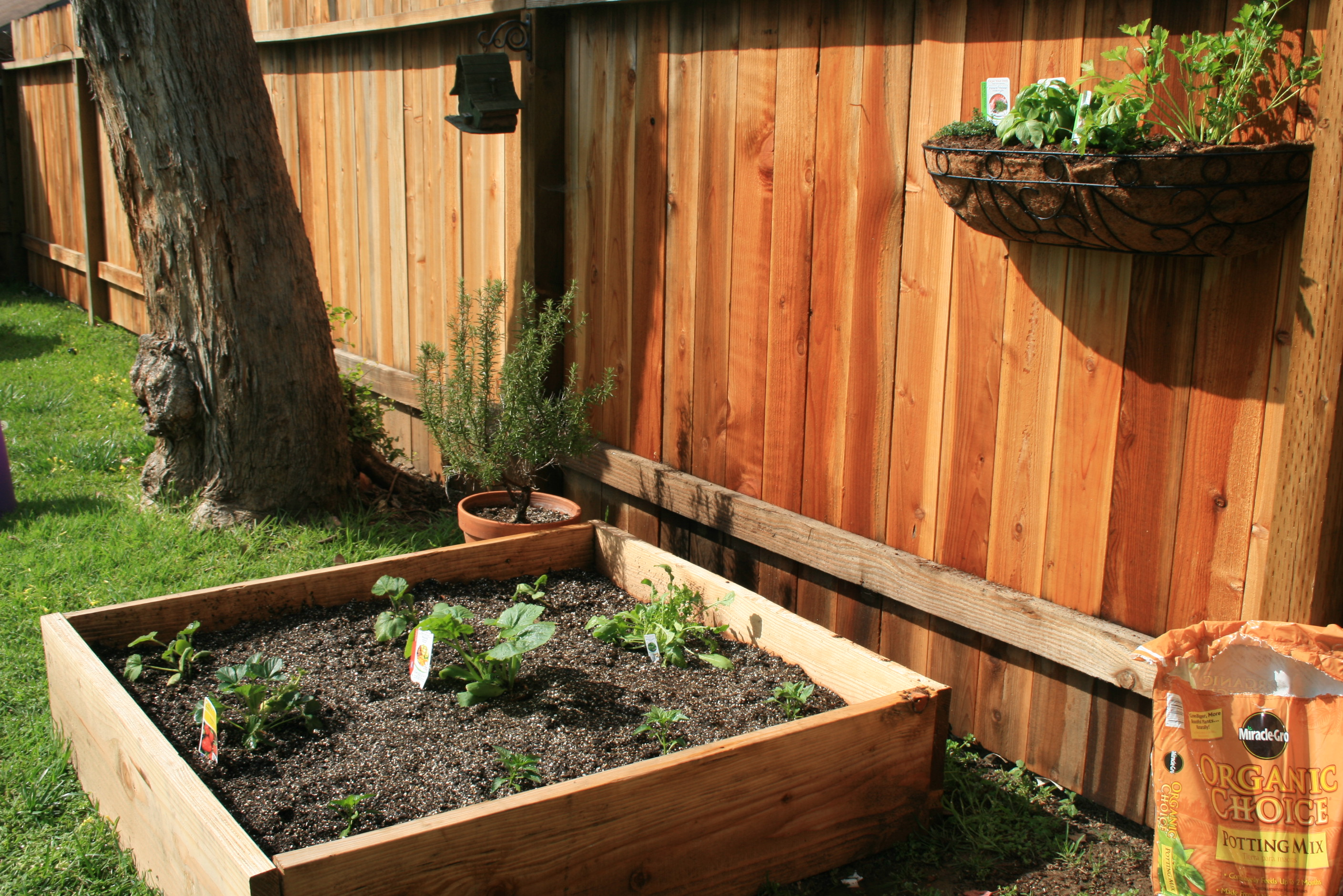 Our Summer Garden & DIY Worm Compost Bin | The Brown Bag